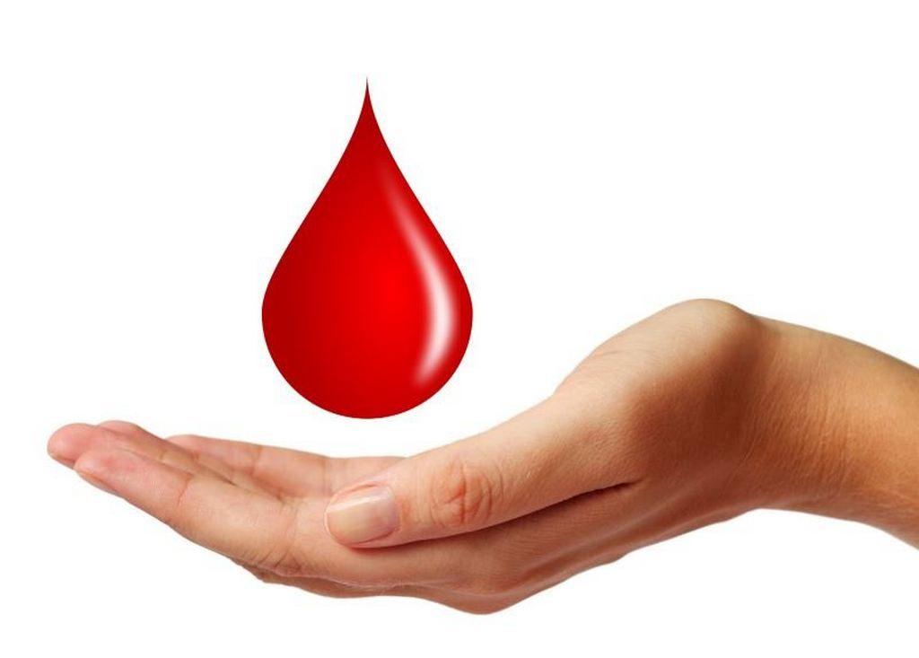 Капля крови и ладонь