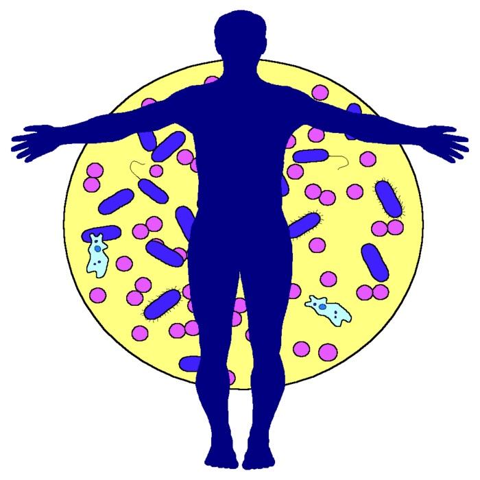 Силуэт человека и вирусы