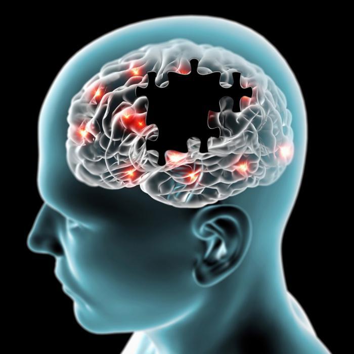 Голова и мозг из паззлов