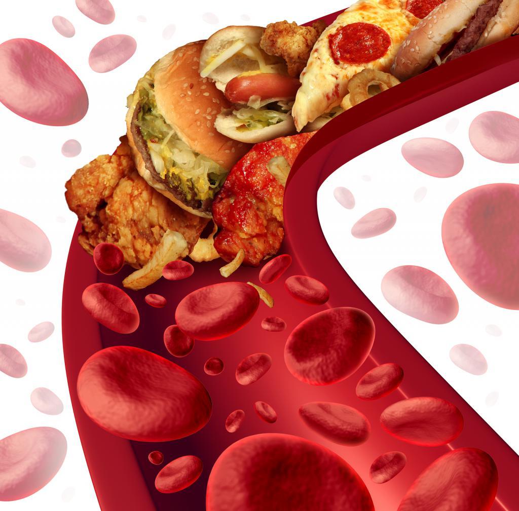 Жирная пища и кровь